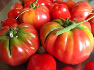 Heirloom Tomato 2