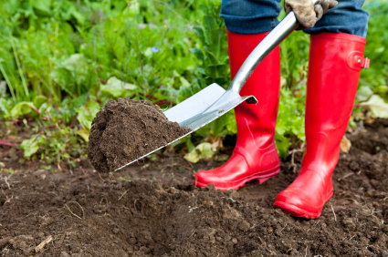 Simple Tips and Tricks Every Gardener Should Know
